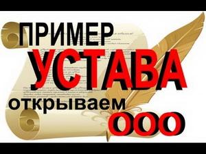 Образец Устава ООО с Филиалом - картинка 3