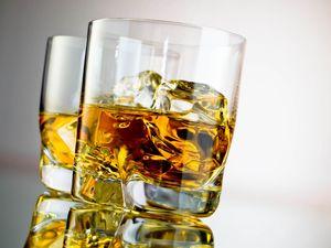 Лицензия на алкоголь сколько стоит