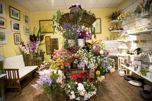 устав цветочного магазина образец