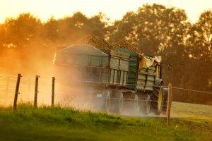 Ведение сельскохозяйственной деятельности