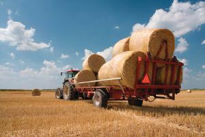 Сельхоз продукция