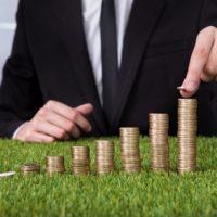 сроки оплаты земельного налога