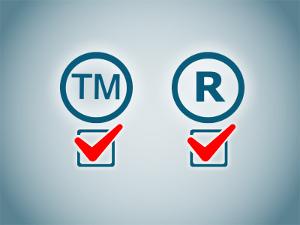 Сроки регистрации ТЗ