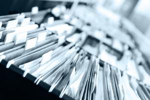 Образцы бланков Отчетов скачать