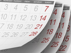 Дата выхода на работу