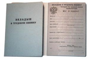 Порядковый номер записи во вкладыше в трудовую книжку
