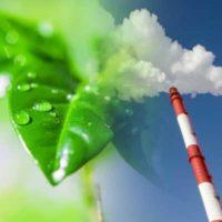 экологическая декларация