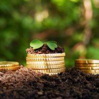 Оплата земельного налога через Сбербанк